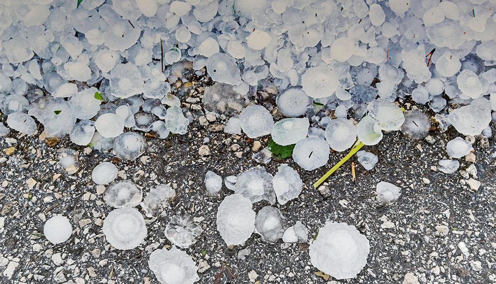 Hail map, new protection guidelines help evaluate and mitigate risk